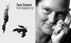 Lieve Sinaeve Fotografie